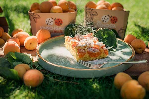 Almond - Venosta Valley Apricot cake